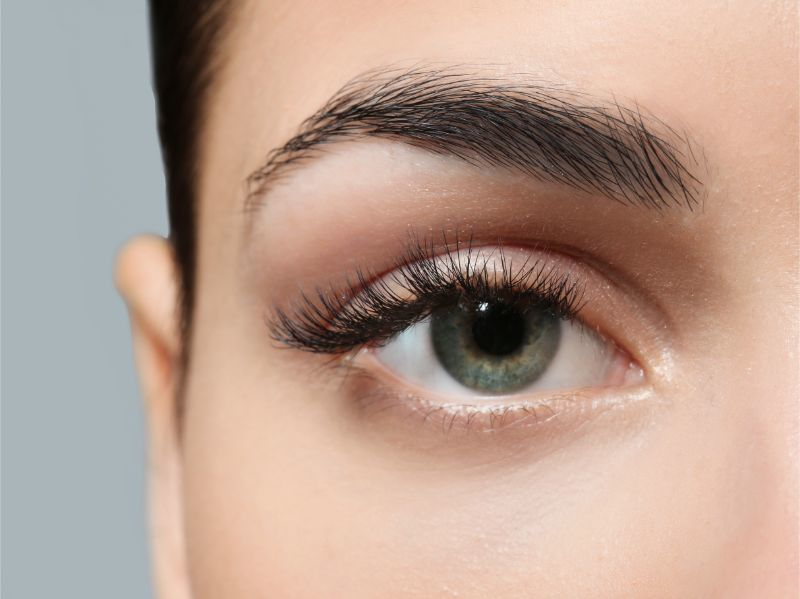 Eyebrows Transplant